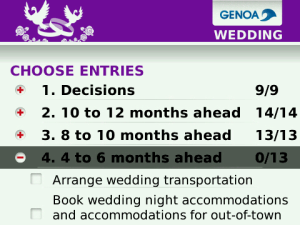 Bb wedding checklist