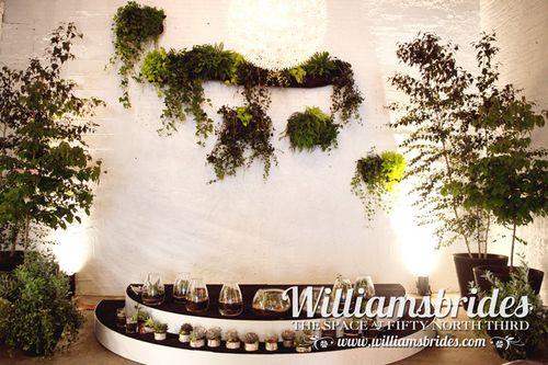 cool-wedding-aisle-plants