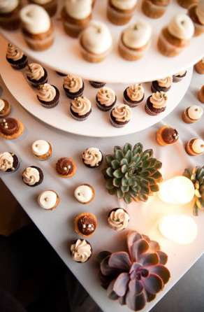 cupcake-tray-succulent