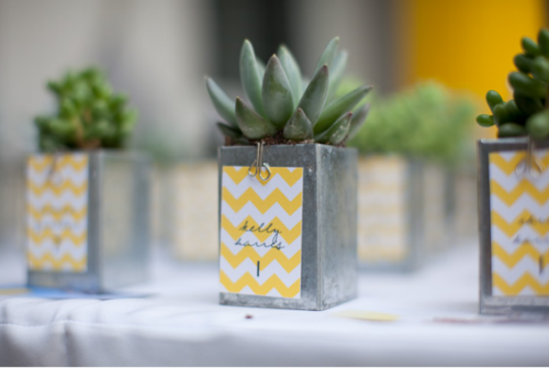chevron-escort-card-chevron-party-favors-escort-card-and-party-favor-small-plant